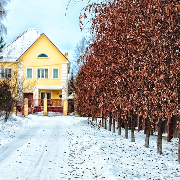 NH Winter